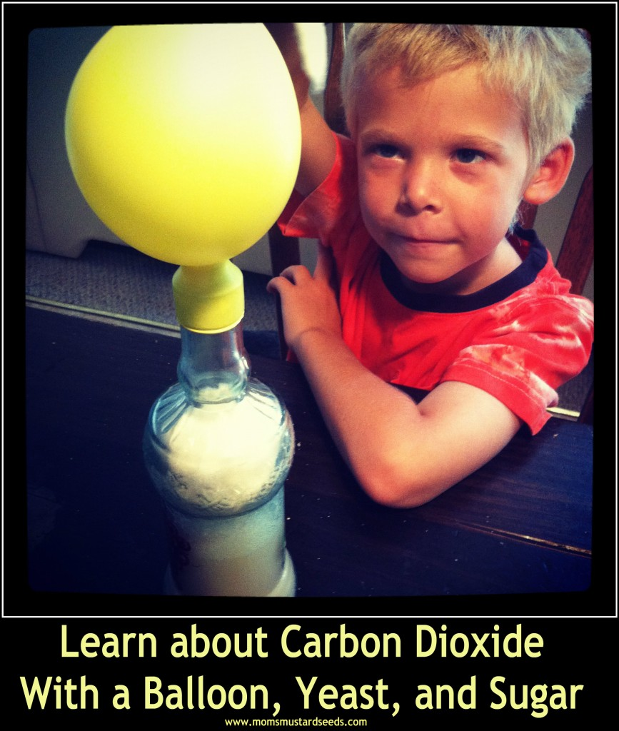 Learn About Carbon Dioxide