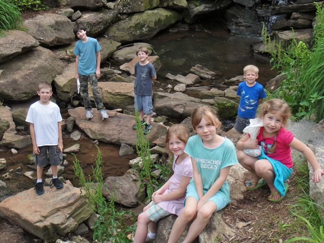 Teach Them Diligently At A Waterfall