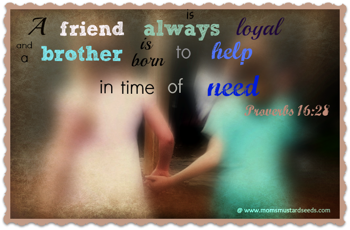 friendship Proverb 16 28