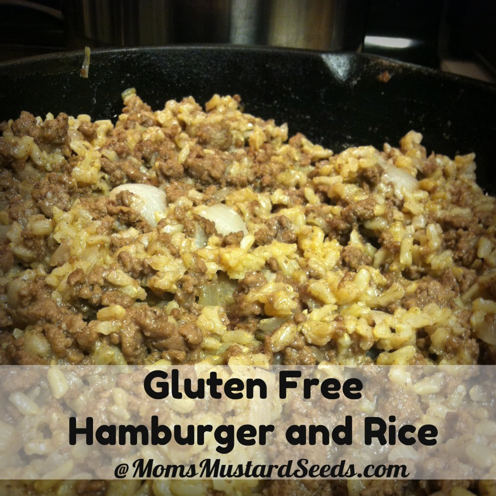 Gluten Free Hamburger and Rice