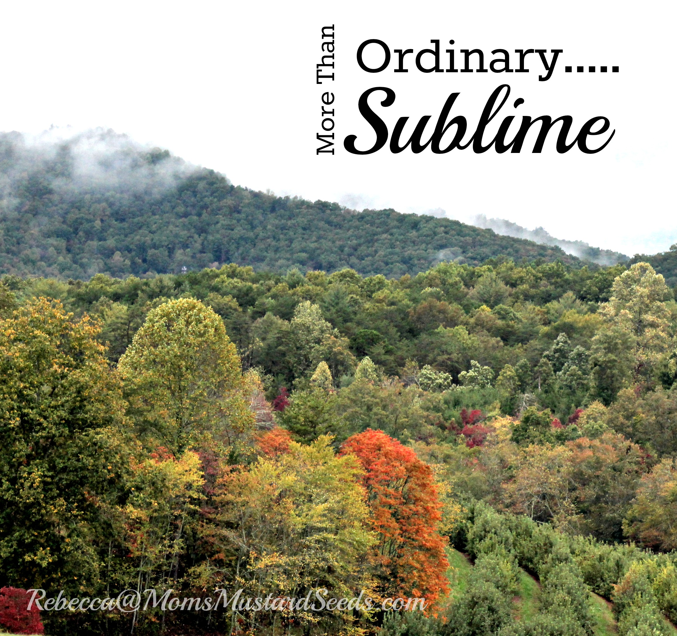 Ordinary Sublime