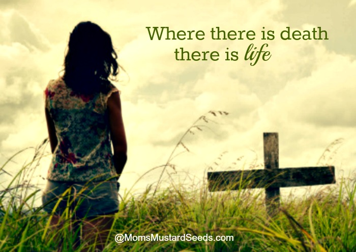 Where there is death there is life