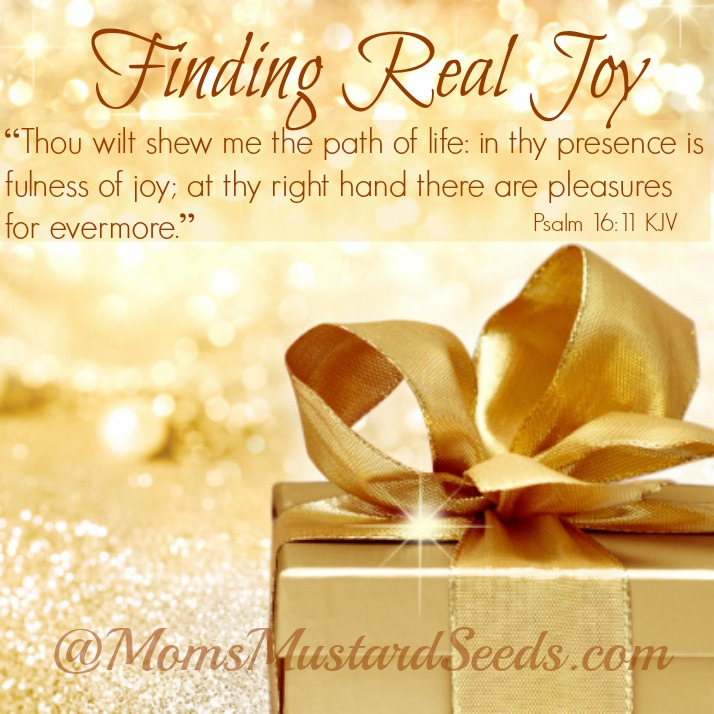 Finding Real Joy in the presence of God is the fullness of joy