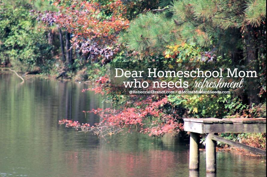Homeschool Mom Needs Refreshment